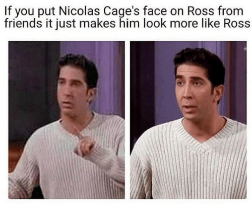 Friends, Ross, and Him: If you put Nicolas Cage's face on Ross from  friends it just makes him look more like Ross