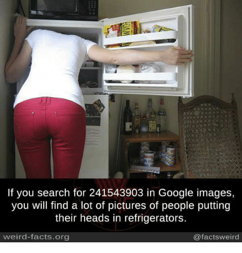 If You Search For 241543903 In Google Images You Will Find A Lot Of