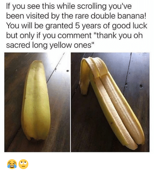 "Memes, Thank You, and Banana: If you see this while scrolling you've  been visited by the rare double banana!  You will be granted 5 years of good luck  but only if you comment ""thank you oh  sacred long yellow ones"" 😂🙄"