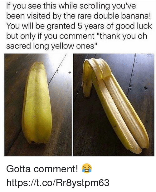 "Memes, Thank You, and Banana: If you see this while scrolling you've  been visited by the rare double banana!  You will be granted 5 years of good luck  but only if you comment ""thank you oh  sacred long yellow ones"" Gotta comment! 😂 https://t.co/Rr8ystpm63"