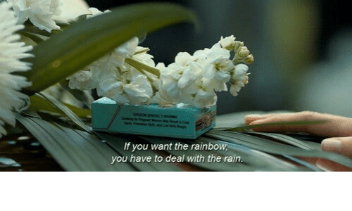 Rain, You, and Deal: If you want the rainbo  you have to deal with the rain