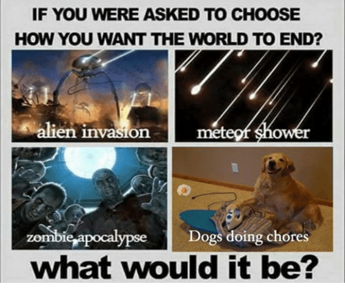Dogs, Shower, and Alien: IF YOU WERE ASKED TO CHOOSE  HOW YOU WANT THE WORLD TO END?  alien invasion metegf shower  zombicrapocalypese Dogs doing chores  what would it be?