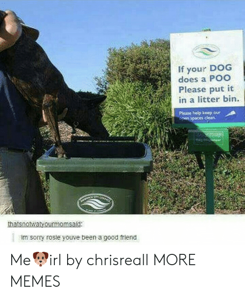 Dank, Memes, and Sorry: If your DOG  does a POO  Please put it  in a litter bin.  ORPiese help koep oor  es clean.  thatsnotwatvourmomsaid:  im sorry rosie youve been a good friend Me🐶irl by chrisreall MORE MEMES