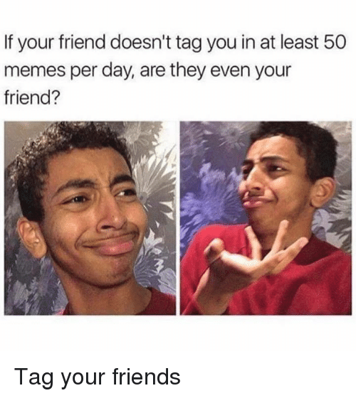 Dank, Friends, and Memes: If your friend doesn't tagyou in at least 50  memes per day, are they even your  friend? Tag your friends