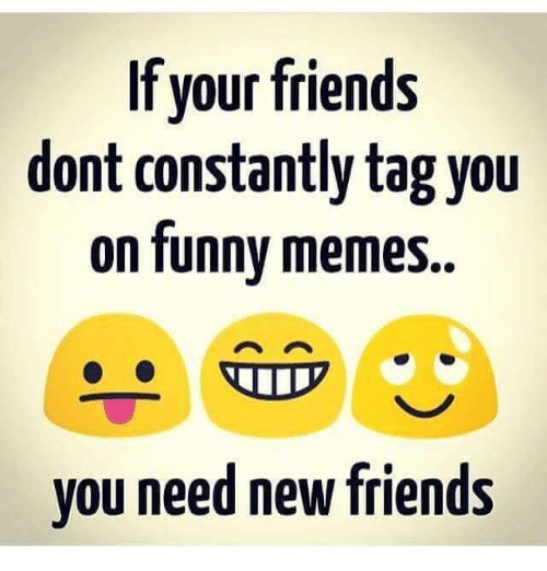 Memes  F F A  And New Friend If Your Friends Dont Constantly Tag You On