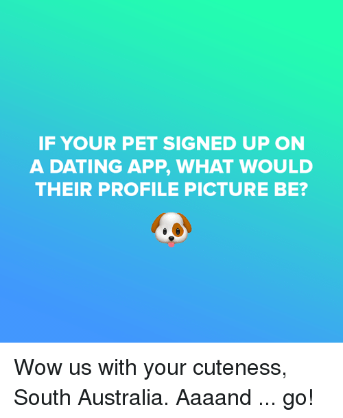 wow dating app