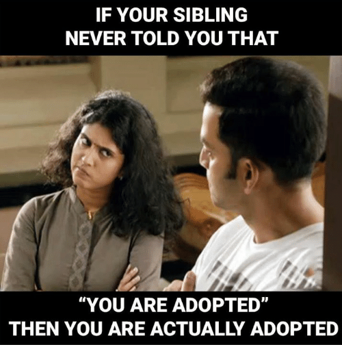 Image result for siblings adopted memes