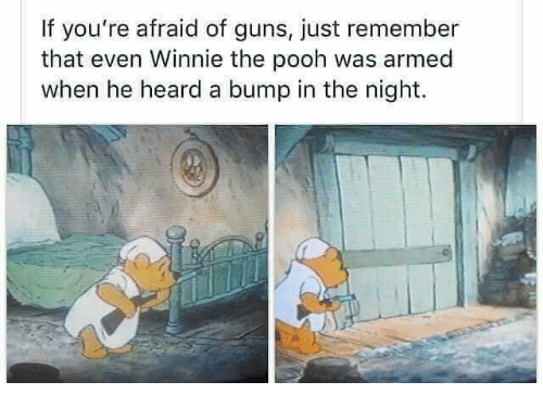 Guns, Memes, and Winnie the Pooh: If you're afraid of guns, just remember  that even Winnie the pooh was armed  when he heard a bump in the night.