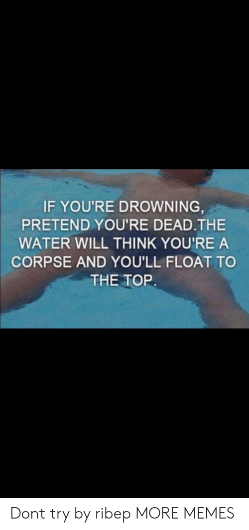 Dank, Memes, and Target: IF YOU'RE DROWNING  PRETEND YOU'RE DEAD.THE  WATER WILL THINK YOU'RE A  CORPSE AND YOU'LL FLOAT TO  THE TOR Dont try by ribep MORE MEMES