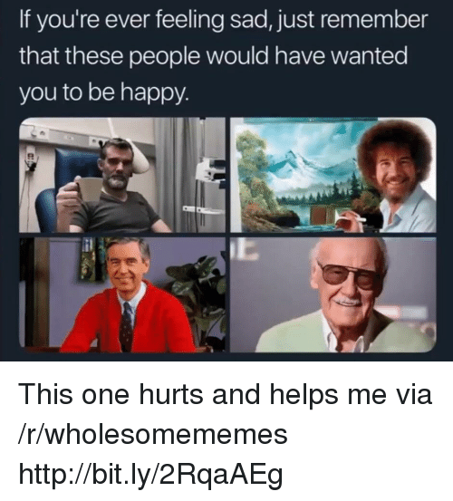Happy, Http, and Sad: If you're ever feeling sad, just remember  that these people would have wanted  you to be happy This one hurts and helps me via /r/wholesomememes http://bit.ly/2RqaAEg