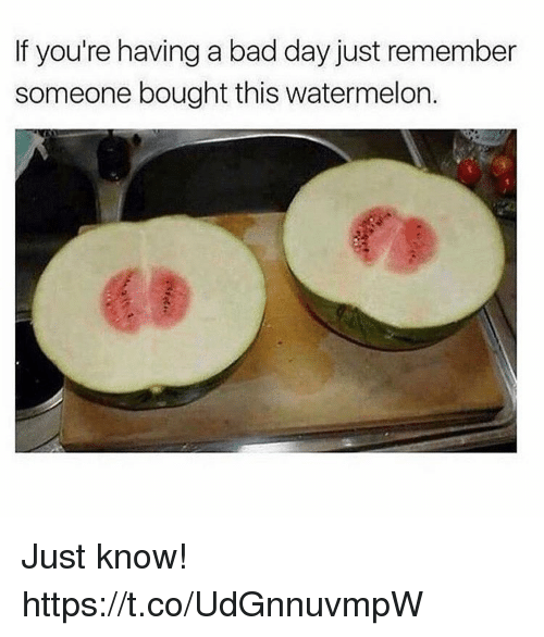 Bad, Bad Day, and Watermelon: If you're having a bad day just remember  someone bought this watermelon.  63 Just know! https://t.co/UdGnnuvmpW