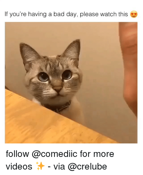 Bad, Bad Day, and Memes: If you're having a bad day, please watch this follow @comediic for more videos ✨ - via @crelube