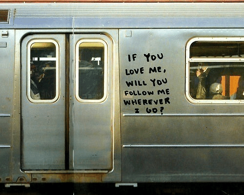 Love, Will, and You: IF Yovu  LOVE ME,  WILL You  FOLLOW ME  WHEREVER