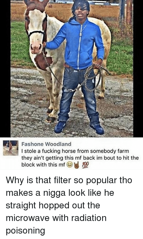 Black Twitter, Microwave, and Poison: IFA Fashone Woodland  I stole a fucking horse from somebody farm  they ain't getting this mf back im bout to hit the  block with this mf 100 Why is that filter so popular tho makes a nigga look like he straight hopped out the microwave with radiation poisoning