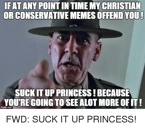 Meme, Memes, and Ups: IFAT ANY POINTIN TIME MY CHRISTIAN  OR CONSERVATIVE MEMES OFFEND YOU!  SUCKITUP PRINCESS!BECAUSE  YOURE GOING TO SEE ALOT MORE OF IT! FWD: SUCK IT UP PRINCESS!