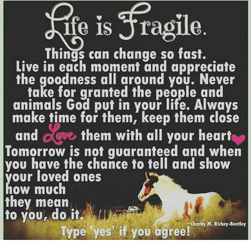 Ife Is Jragile Can Change So Fast Live in Each Moment and ...