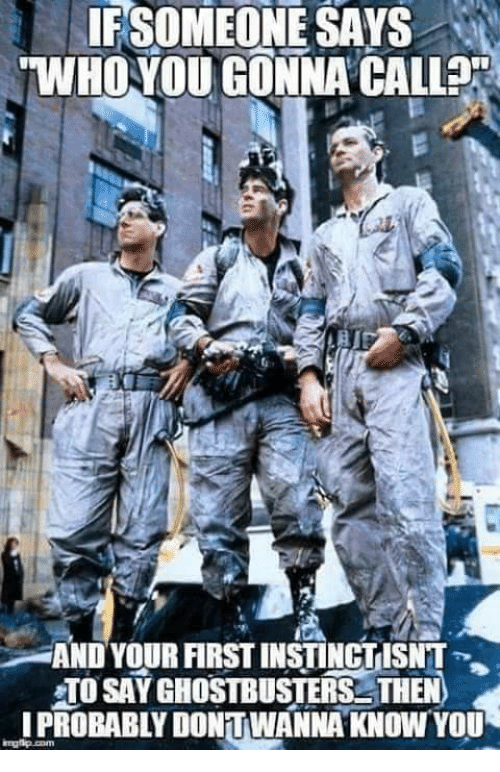 Image result for if someone hears the words who ya gonna call and doesnt think of ghostbusters meme