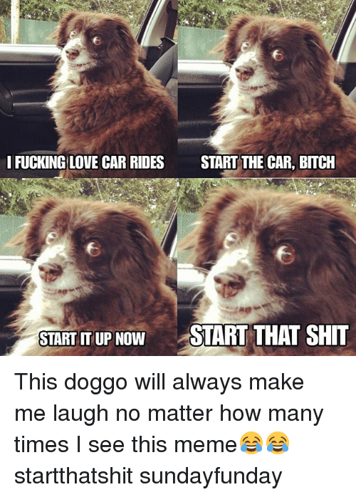 Bitch, Funny, and How Many Times: IFUCKING LOVE CAR RIDES  START THE CAR, BITCH  START IT UP NOW  START THAT SHIT This doggo will always make me laugh no matter how many times I see this meme😂😂 startthatshit sundayfunday