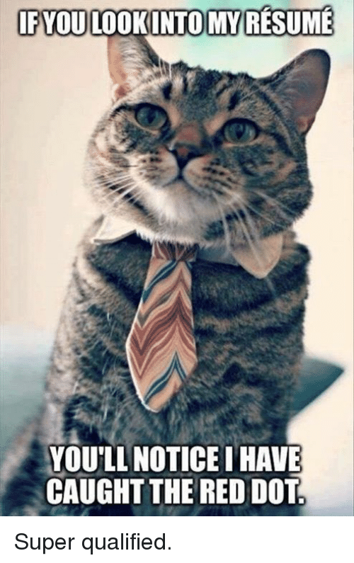 Grumpy Cat, Resume, and Super: IFYOULOOKINTOMY RESUME  YOU'LL NOTICE I HAVE  CAUGHT THE RED DOT Super qualified.