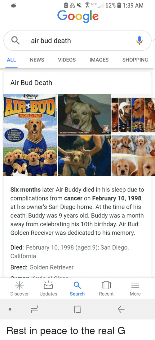 Birthday, Google, and News: ,  iG .11 6290  1:39 AM  Google  air bud death  ALL  NEWS  VIDEOS  IMAGES  SHOPPING  Air Bud Death  Six months later Air Buddy died in his sleep due to  complications from cancer on February 10, 1998,  at his owners San Diego home. At the time of his  death, Buddy was 9 years old. Buddy was a month  away from celebrating his 10th birthday. Air Bud  Golden Receiver was dedicated to his memory.  Died: February 10, 1998 (aged 9); San Diego,  California  Breed: Golden Retriever  Discover Updates  Search  Recent  More