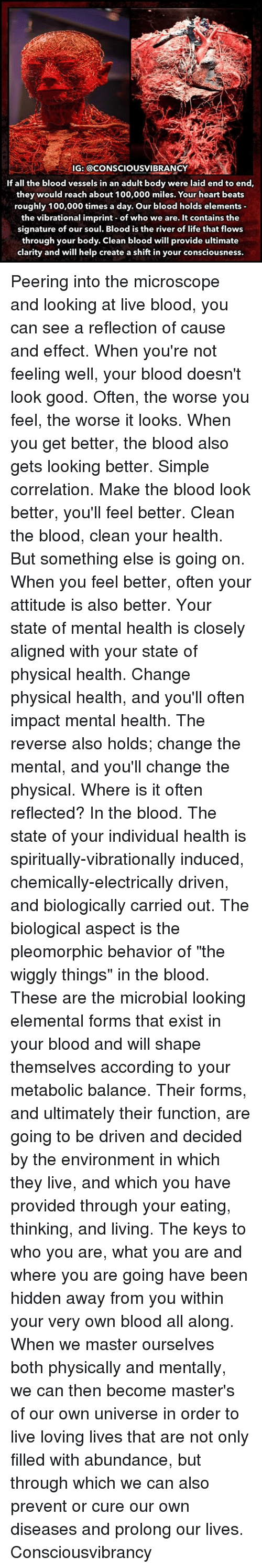 "Anaconda, Life, and Memes: IG: @CONSCIOUSVIBRANCY  If all the blood vessels in an adult body were laid end to end,  they would reach about 100,000 miles. Your heart beats  roughly 100,000 times a day. Our blood holds elements  the vibrational imprint of who we are. It contains the  signature of our soul. Blood is the river of life that flows  through your body. Clean blood will provide ultimate  clarity and will help create a shift in your consciousness. Peering into the microscope and looking at live blood, you can see a reflection of cause and effect. When you're not feeling well, your blood doesn't look good. Often, the worse you feel, the worse it looks. When you get better, the blood also gets looking better. Simple correlation. Make the blood look better, you'll feel better. Clean the blood, clean your health. But something else is going on. When you feel better, often your attitude is also better. Your state of mental health is closely aligned with your state of physical health. Change physical health, and you'll often impact mental health. The reverse also holds; change the mental, and you'll change the physical. Where is it often reflected? In the blood. The state of your individual health is spiritually-vibrationally induced, chemically-electrically driven, and biologically carried out. The biological aspect is the pleomorphic behavior of ""the wiggly things"" in the blood. These are the microbial looking elemental forms that exist in your blood and will shape themselves according to your metabolic balance. Their forms, and ultimately their function, are going to be driven and decided by the environment in which they live, and which you have provided through your eating, thinking, and living. The keys to who you are, what you are and where you are going have been hidden away from you within your very own blood all along. When we master ourselves both physically and mentally, we can then become master's of our own universe in order to live loving lives that are not only filled with abundance, but through which we can also prevent or cure our own diseases and prolong our lives. Consciousvibrancy"