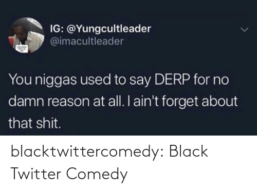 Tumblr, Twitter, and Black: IG: @Yungcultleader  @imacultleader  You niggas used to say DERP for no  damn reason at all. I ain't forget about  that shit. blacktwittercomedy:  Black Twitter Comedy