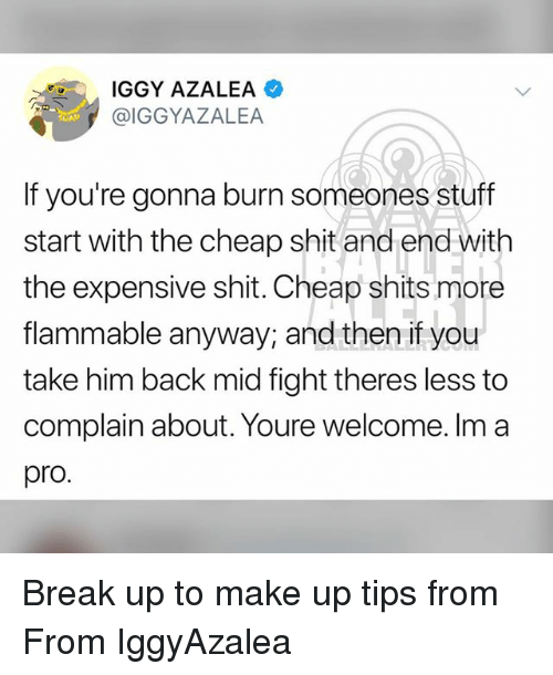 Iggy Azalea, Memes, and Shit: IGGY AZALEA  @IGGYAZALEA  If you're gonna burn someones stuff  start with the cheap shit and end wit  the expensive shit. Cheap shits more  flammable anyway, and then if you  take him back mid fight theres less to  complain about. Youre welcome. Im a  pro. Break up to make up tips from From IggyAzalea