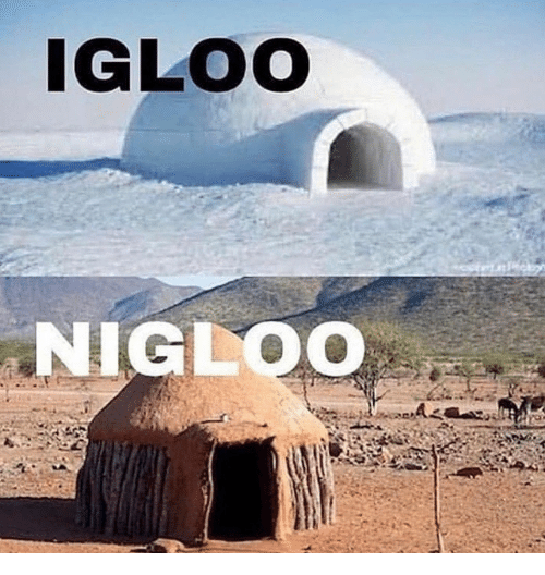 IGLOO NIGLOO | Igloo Meme on ME ME