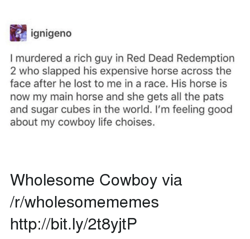 Life, Lost, and Good: ignigeno  I murdered a rich guy in Red Dead Redemption  2 who slapped his expensive horse across the  face after he lost to me in a race. His horse is  now my main horse and she gets all the pats  and sugar cubes in the world. I'm feeling good  about my cowboy life choises. Wholesome Cowboy via /r/wholesomememes http://bit.ly/2t8yjtP