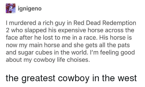 Life, Lost, and Good: ignigeno  I murdered a rich guy in Red Dead Redemption  2 who slapped his expensive horse across the  face after he lost to me in a race. His horse is  now my main horse and she gets all the pats  and sugar cubes in the world. I'm feeling good  about my cowboy life choises. the greatest cowboy in the west