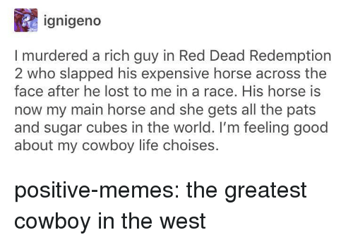Life, Memes, and Tumblr: ignigeno  I murdered a rich guy in Red Dead Redemption  2 who slapped his expensive horse across the  face after he lost to me in a race. His horse is  now my main horse and she gets all the pats  and sugar cubes in the world. I'm feeling good  about my cowboy life choises. positive-memes:  the greatest cowboy in the west