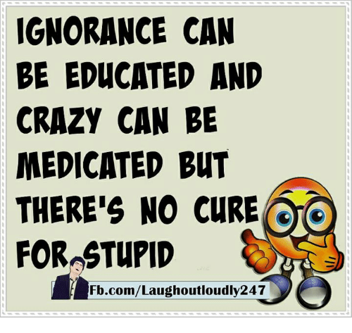 Crazy, Memes, and fb.com: IGNORANCE CAN  BE EDUCATED AND  CRAZY CAN BE  MEDICATED BUT  THERE'S NO CURE  OO  FOROSTUPID  Fb.com/Laughoutloudly247