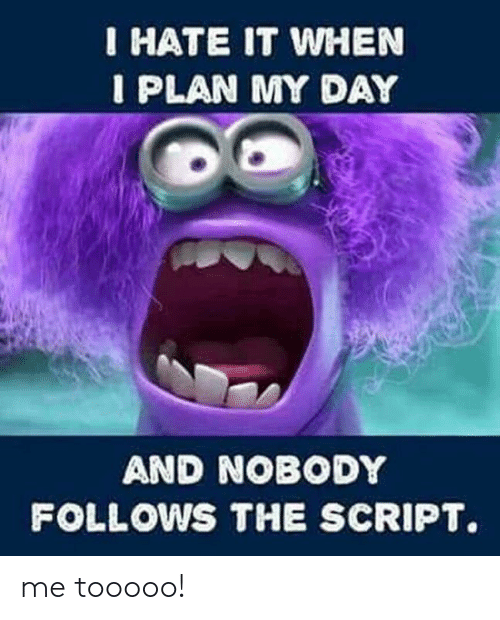 Memes, 🤖, and The Script: IHATE IT WHEN  I PLAN MY DAY  AND NOBODY  FOLLOWS THE SCRIPT. me tooooo!