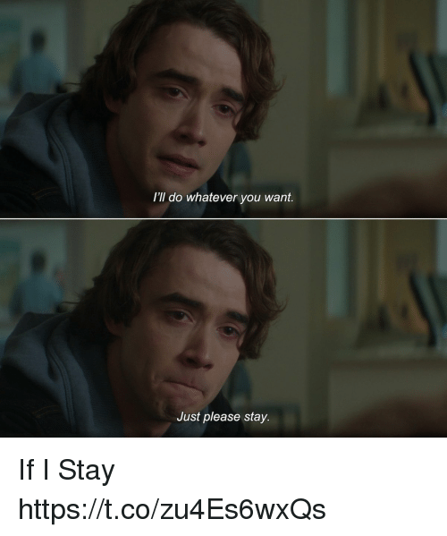 Memes, If I Stay, and 🤖: I'II do whatever you want.  Just please stay. If I Stay https://t.co/zu4Es6wxQs