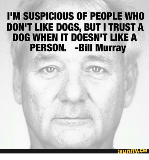 Bill Murray Meme Quotes