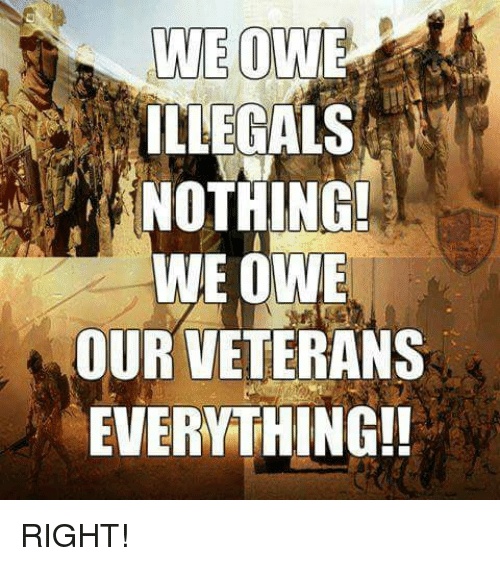 Memes, 🤖, and Right: ILEGALS  NOTHING!  WE OWE  OUR VETERANS  EVERYTHING!! RIGHT!