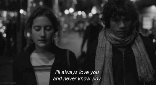 Love, Never, and Why: I'll always love you  and never know why.  perm