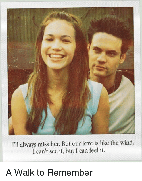 Memes, 🤖, and A Walk to Remember: I'll always miss her. But our love is like the wind.  I can't see it, but I can feel it. A Walk to Remember