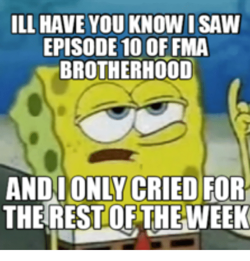 ILL HAVE YOU KNOW I SAW EPISODE 10 OF FMA BROTHERHOOD