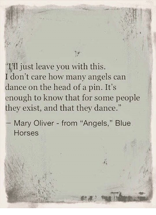 Image result for mary oliver angels