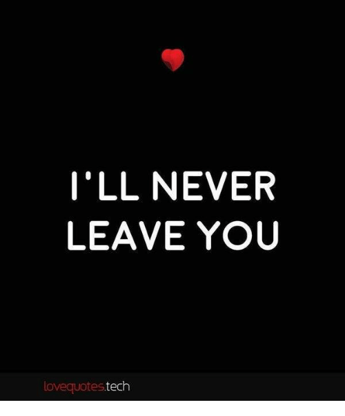 Ill Never Leave You Love Quotes Tech Meme On Meme