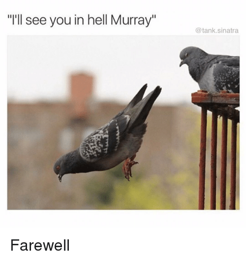 """Funny, Hell, and Tank: """"I'll see you in hell Murray""""  @tank.sinatra Farewell"""
