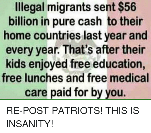 Memes, Patriotic, and Free: Illegal migrants sent $56  billion in pure cash to their  home countries last year and  every year. That's after their  kids enjoyed free education,  free lunches and free medical  care paid for by you. RE-POST PATRIOTS!  THIS IS INSANITY!