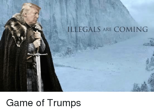 Image result for Illegals are coming