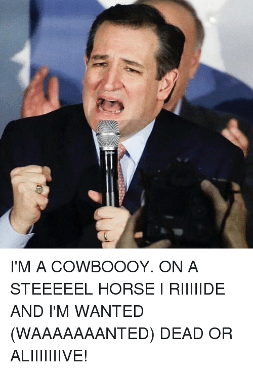 Funny, Horses, and Horse: I'M A COWBOOOY. ON A STEEEEEL HORSE I RIIIIIDE AND I'M WANTED (WAAAAAAANTED) DEAD OR ALIIIIIIIVE!
