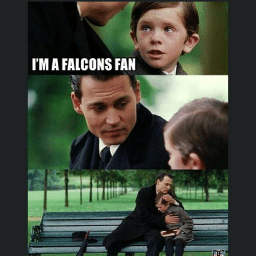 Falcons Fan