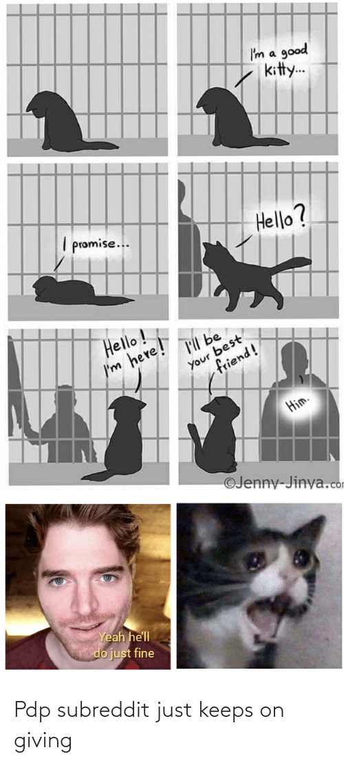 Best Friend, Hello, and Yeah: I'm a good  kitty.  I promise..  Hello?  Hello !  'll be  Your best  friend!  I'm here!  Him.  ©Jenny-Jinya.com  Yeah he'll  do just fine Pdp subreddit just keeps on giving
