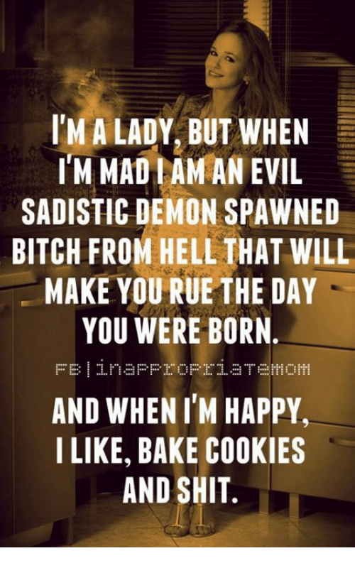 Bitch, Cookies, and Memes: IM A LADY, BUT WHEN  IM MADIAMAN EVIL  SADISTIC DEMON SPAWNED  BITCH FROM HELL THAT WILL  MAKE YOU RUE THE DAY  YOU WERE BORN  AND WHEN I'M HAPPY  I LIKE, BAKE COOKIES  AND SHIT.