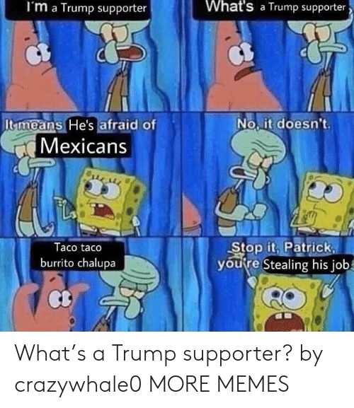 Dank, Memes, and Target: I'm a Trump supporter  What's a Trump supporter  Itmeans He's afraid of  No.it doesn't  Mexicans  Taco taco  burrito chalupa  Stop it. Patrick  youre Stealing his job What's a Trump supporter? by crazywhale0 MORE MEMES