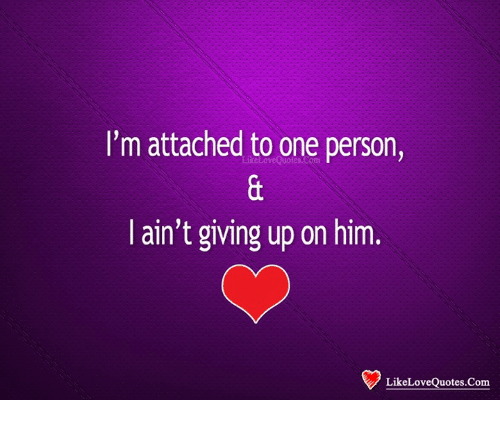 i m attached to one person i ain t giving up on him like love quotes